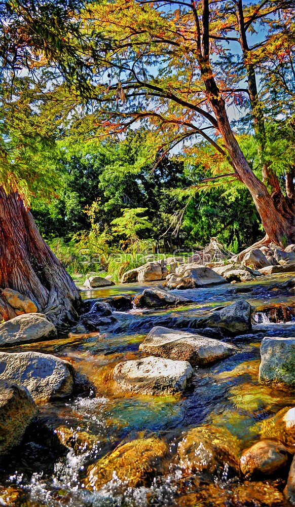 Guadalupe River  by Savannah Gibbs