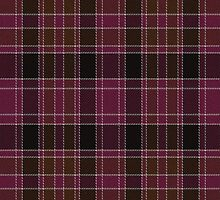 02713 Gloucester County, New Jersey E-fficial Fashion Tartan Fabric Print Iphone Case by Detnecs2013