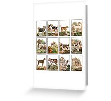 Dog Collage In Vintage Style Greeting Card