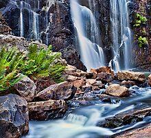 Mackenzie Falls by Matt Jones