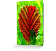 Indian Summer Leaf Greeting Card