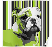 English Bulldog Puppy Abstract Poster