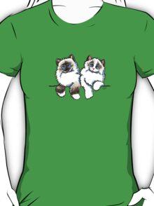 Pair of Dolls   Ragdoll Cats T-Shirt