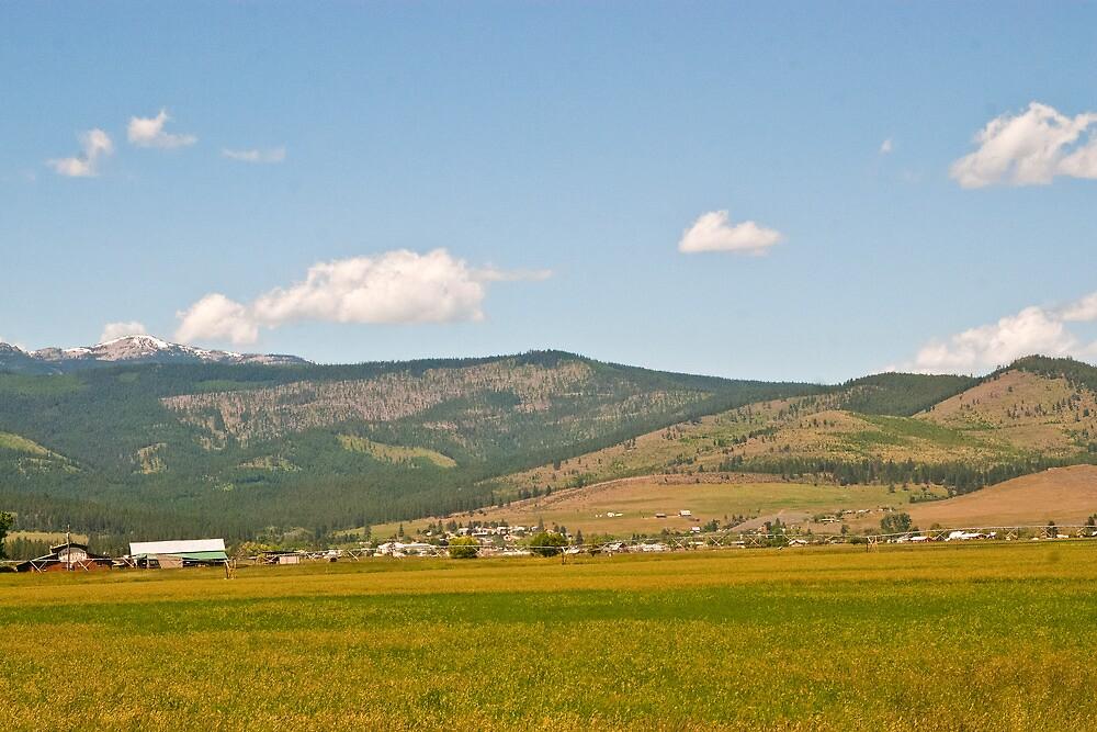 Good Medicine--Hot Springs, Montana by Bryan D. Spellman