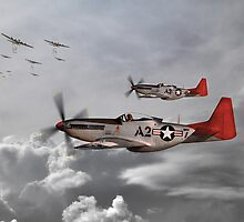 Tuskegee Airmen by James Biggadike