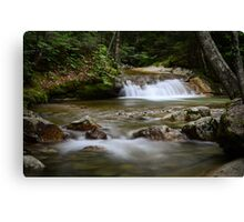 Pemigewasset River #1 Canvas Print