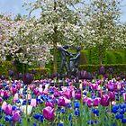 In the Gardens by Cathy Jones