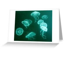 Jellyfish white pencil drawing Greeting Card