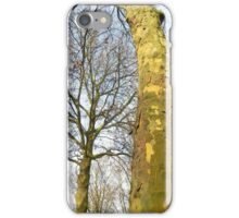 Two Plane trees  iPhone Case/Skin
