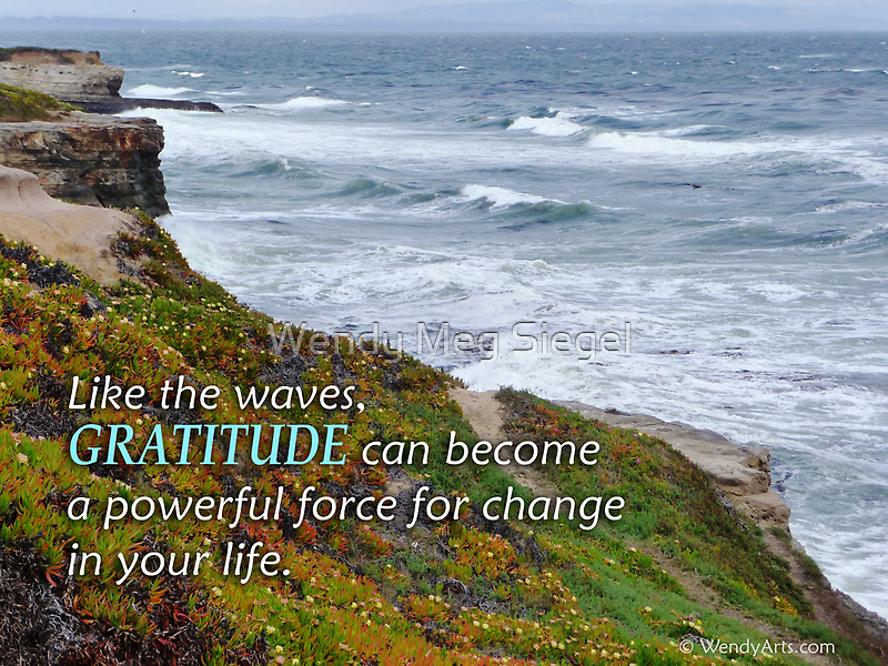 Gratitude is a Powerful Force  by Wendy Meg Siegel