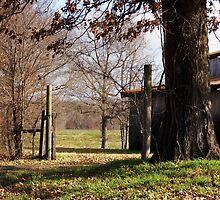 Red Hill Barn by WildestArt