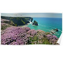 Cornwall: Sea Pinks at Bedruthan Poster