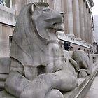 British Museum Lion by Stephanie Fay