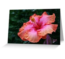 Happy Hibiscus! Greeting Card