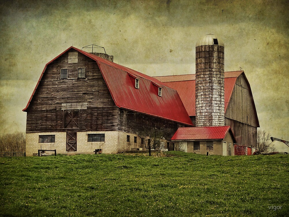 Red Roof by vigor