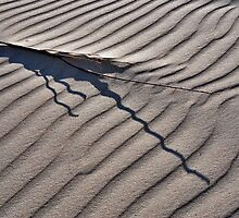 Shapes and patterns on the North Sea Beach by Adri  Padmos