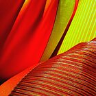 Luxury & Colour by Charlie-R