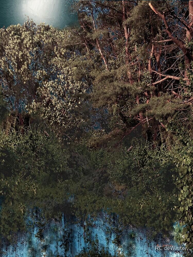 Hanging Garden in Moonlight by RC deWinter