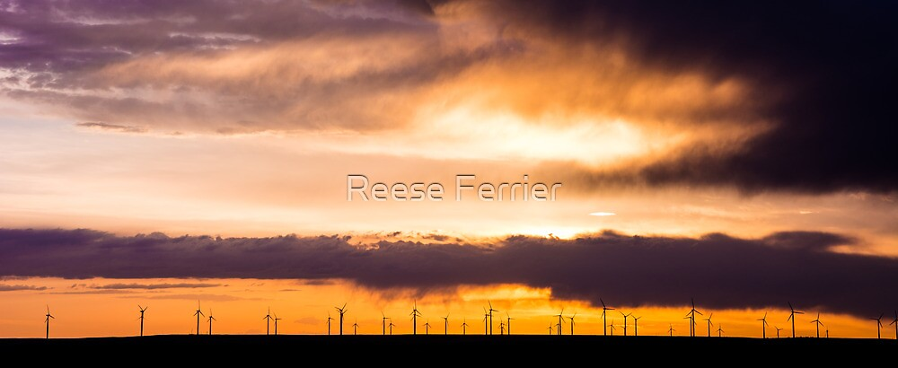 Wind Turbines on the Plains by Reese Ferrier