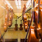 The museum of violins in Milan, Italy by Bruno Beach