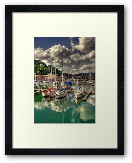Dover Marina  by larry flewers