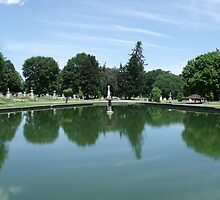 Albany Rural Cemetery - Pond by Stephanie Fay