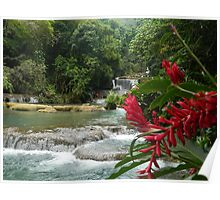 Jamaican Waterfall  Poster