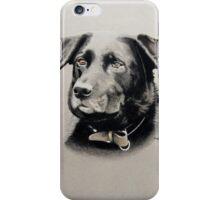 George the gorgeous veteran Lab cross German Shepherd iPhone Case/Skin