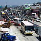 In the middle of the traffic by Luis Alberto Landa Ladrón de Guevara