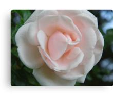 Simple Rose Canvas Print