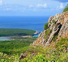 Mountain View of the Ocean by emilyduwan