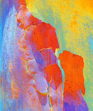 Summer Eucalypt Abstract 22 by Margaret Saheed