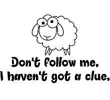 Don't follow me. Photographic Print