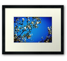 : Super Blue : Framed Print