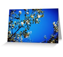 : Super Blue : Greeting Card
