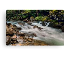 Natural Smoother Canvas Print