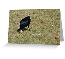 Eggs for Breakfast Greeting Card