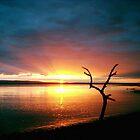 Burnham-on-Sea - Sunset #1 by Antony R James