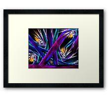 I Spy Spike Flowers Framed Print