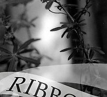 ribbon by sou-an