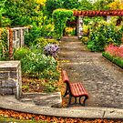the bench by Manon Boily