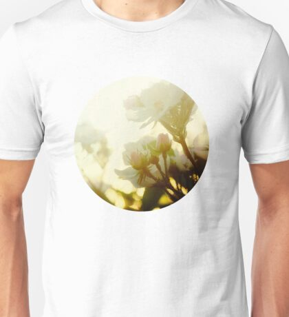 roses in the morning sun T-Shirt