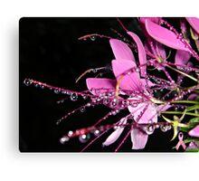 """Jeweled Raindrops Of Hope"" Canvas Print"