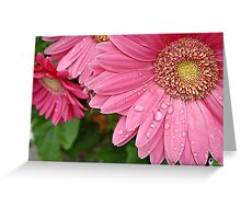 """""""Pink Daisy Of Hope"""" Greeting Card"""