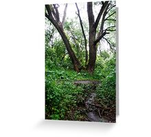 Grandfather Willow Greeting Card