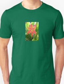 Orange Amaryllis Flower Blooms in Springtime Unisex T-Shirt