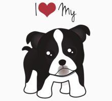 Cute Little Boston Terrier Puppy Dog by ArtformDesigns