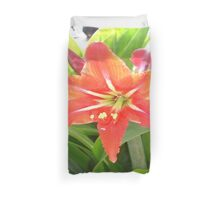 Orange Amaryllis Flower Blooms in Springtime Duvet Cover
