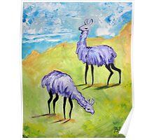 Angry Alpacas Poster