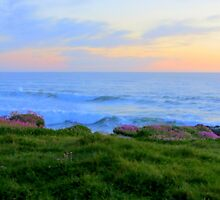 Clover Cliffs...Yachats Resort, Yachats, Oregon by trueblvr